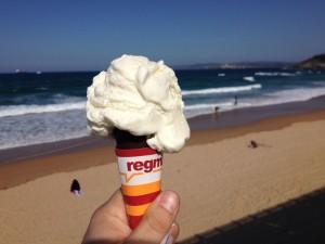 Helado de Yogurt Regma Sardinero