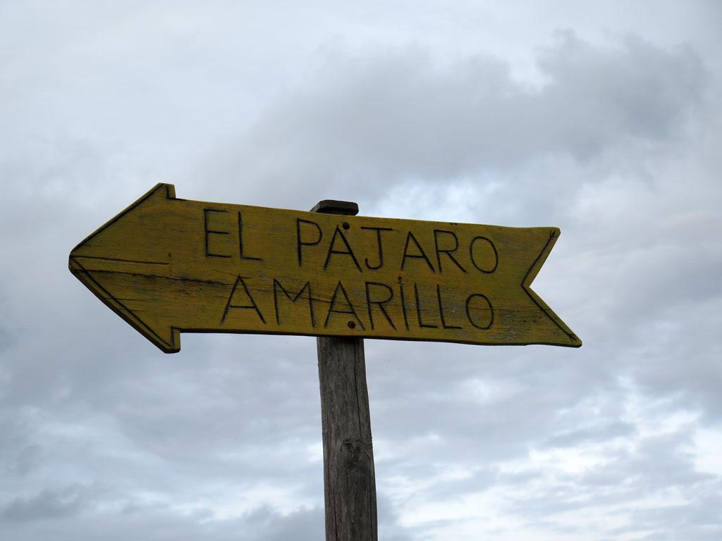 Photo of Vistas a precio de Oro – El Pajaro Amarillo Oyambre