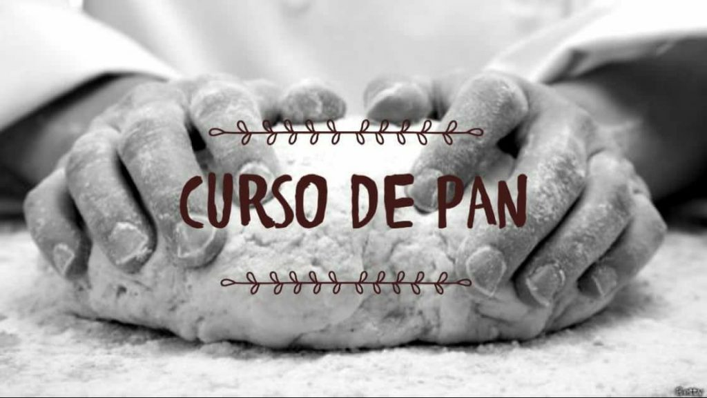 Curso de Pan Doctor Luisito