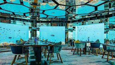 Photo of Los 10 mejores restaurantes del mundo según Tripadvisor